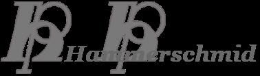 HAMMERSCHMID-Logo